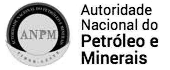 Autoridade Nasionál Petróleo no Minerais