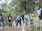 Governo apoia criação de tilápias em Baucau